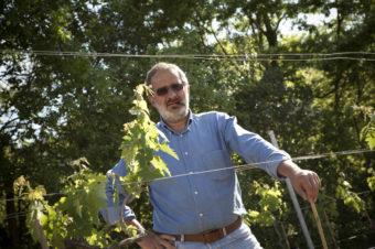 """Dalla cura della cantina del bistellato michelin """"Caino"""", ai vini prodotti e dedicati a Carisio – winenews.it"""