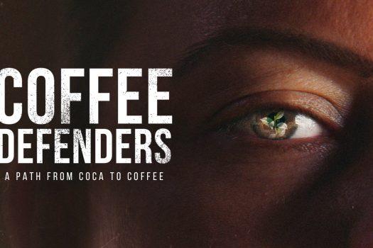 Lavazza racconta il lungo viaggio di due donne e di una piantina di caffè, simbolo di rinascita e difesa dell'ambiente
