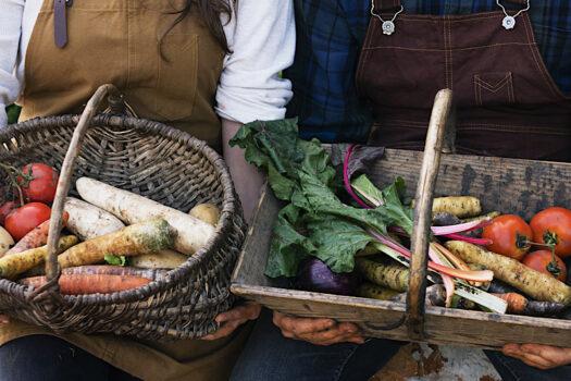 Cinque diete sostenibili per salvare il pianeta
